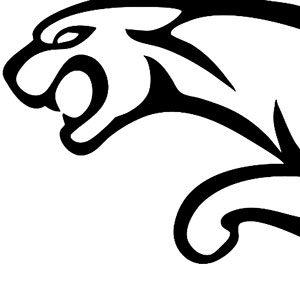 jaguar Icomania Level 8